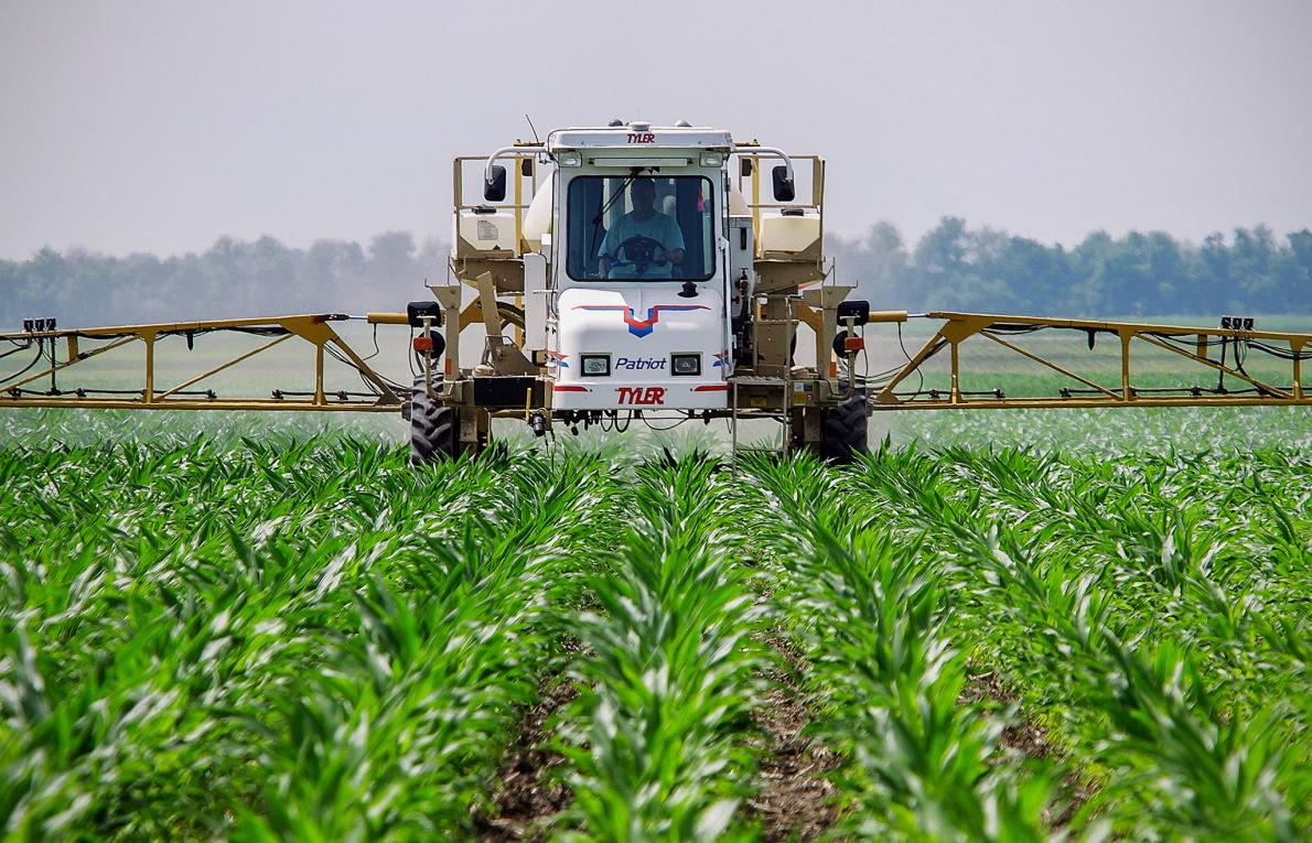 The European Chemical Agency (ECHA) declares that glyphosate is not a carcinogen